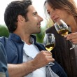 Couple drinking wine in a vineyard — Stock Photo #14033982