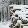Firewood in the snow — Stock Photo #14037343