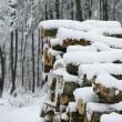 дрова под снегом — Стоковое фото