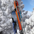 Skiing equipment — Stockfoto