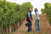 Couple surrounded by vines — Stock Photo
