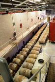 Wine storage facility — Stock Photo