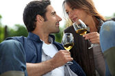 Couple drinking wine in a vineyard — Stock Photo