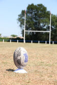 Rugby ball positioned on a grass pitch with the goal in the background — Stock Photo