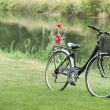 Royalty-Free Stock Photo: Bike placed in grass at the riverside