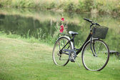 Bike placed in grass at the riverside — Stock Photo