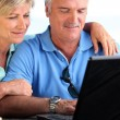 Middle-aged couple using laptop computer — Stock Photo #14138099