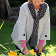 Senior woman gardening — Stock Photo #14138134