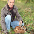 Senior man picking mushrooms — Stock Photo