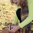 Middle-aged woman gathering chestnuts - Stock Photo