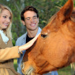 Couple stroking horse — Photo