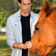 Young man caressing a horse - Stock Photo