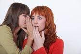 2 人の女性のおしゃべり — ストック写真