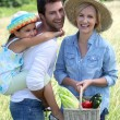 Family in a field — Stock Photo #14173932