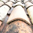 Tiled roof — Stock Photo