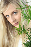 Blonde woman peeking round a house plant — Stock Photo