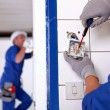 Stock Photo: Craftsmworking on electricity installation