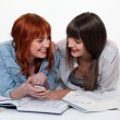 Stock Photo: Two friends studying together