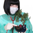 Female doctor using stethoscope on bonsai — Stock Photo #14555681