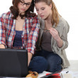 Stock Photo: Female students working together with laptop
