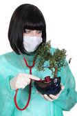Frau Doktor mit Stethoskop auf bonsai — Stockfoto