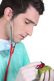Doctor using stethoscope on an apple — Stock Photo