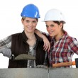 Women building wall - Stock Photo