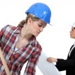 Stock Photo: Labourer working beside engineer