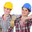 Stock Photo: Female carpenters