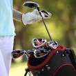 Golf bag - Stock Photo