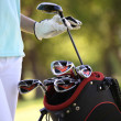 Stock Photo: Golf bag
