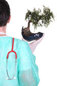 Surgeon with a bonsai tree — Stock Photo