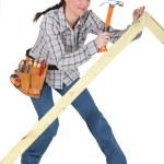 Female carpenter — Stock Photo #14899089