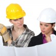 Construction worker looking at a plan with an engineer — Stock Photo #14903153