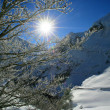Stock Photo: Sun shining onto snow covered mountain