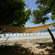 Seaside hammock — Stock Photo