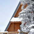 Stock Photo: Snowy cabin and tree