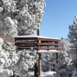 Snow on chalet — Stock Photo #15605507
