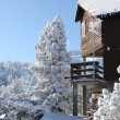 Snow covered chalet — Stock fotografie