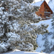 Chalet covered in snow — Stock Photo