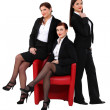 Three sexy businesswomen — Stock Photo