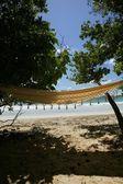 Seaside hammock — Stockfoto