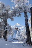 Cabana na montanha pitoresca — Foto Stock