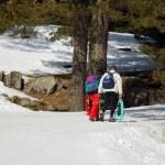 Couple walking through the snow — Stock Photo