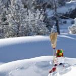 Snowman — Stock Photo #15743981