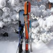 Skis stuck in the snow - Stock Photo