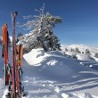 Skis in the snow — Stock Photo #15745463