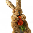 Toy rabbit — Stock Photo