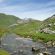 Foto de Stock  : Stream on a mountain top