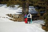 пара, прогулки по снегу — Стоковое фото